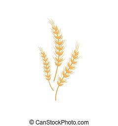 spikelets., bread., farina, tre, illustrazione, fondo., vettore, disegno, bianco, produzione