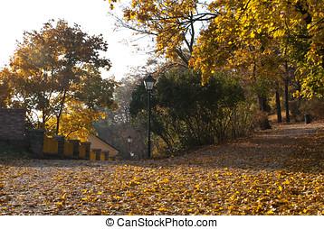 Spilberk Park in Brno