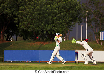 spiller cricket, finder, bold