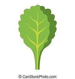 Spinach icon in cartoon flat style isolated object vegetable...