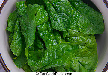 Spinach in a plate background. Top views, close-up