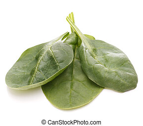 Spinach vegetables cutout - Spinach vegetables isolated on...