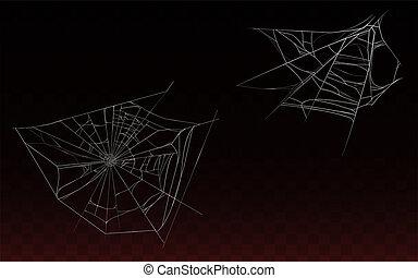 spindelväv, nät, spindel, kollektion, realistisk