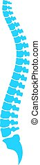Spine column vector icon