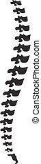 spine diagnostic symbol