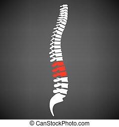 Spine Diagnostics Symbol Design