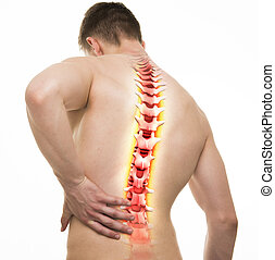 Spine Injury - Studio shot with 3D illustration isolated on white