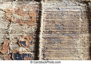 spine of old damaged book