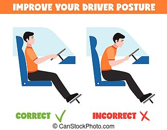 Spine Postures For Driver Illustration