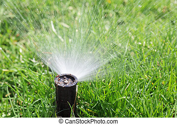 Spinkler - Sprinkler watering green grass for nature growth...