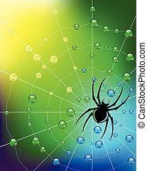 spinne, auf, der, web, in, tau, drops., vector.