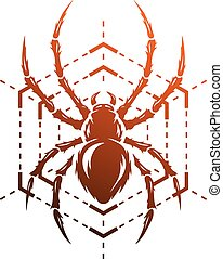 spinne, und, web.