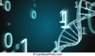 Spinning DNA with binary codes falling