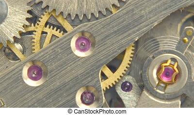 Spinning Gear