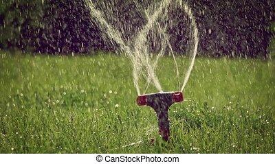 Spinning lawn sprinkler backlit slomo - Spinning lawn ...
