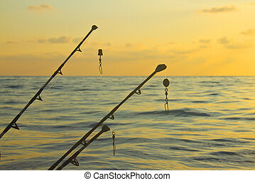 spinning rods in front of sea