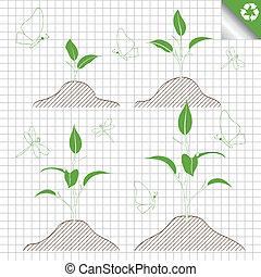 spira, bladen, grön, filial