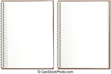 Two illustrations of typical ring bound notepads, blank for your own message. One has a ripped away top sheet.