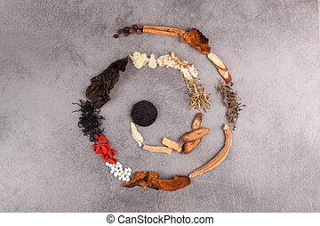 spiral, gjord, av, olik, örtar, av, tcm.
