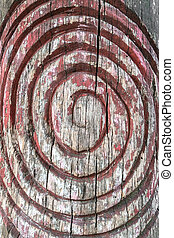 Spiral symbol engraved on the bark of a tree