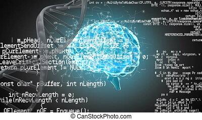 spirala, ludzki, interfejs, dorsze, mózg, dna