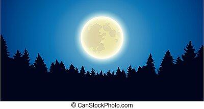 splendere, notte, paesaggio, foresta, luna