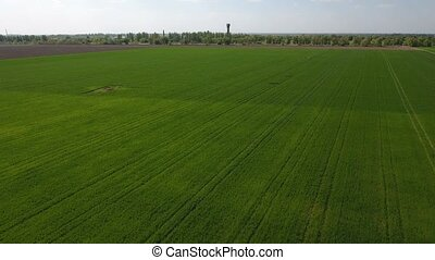 Splendid aerial shot of  bright green fertile fields, stretching to a high water tower, seen faraway, with nice blue skyscape hanging over a  horizon line in Eastern Europe in a sunny day in spring