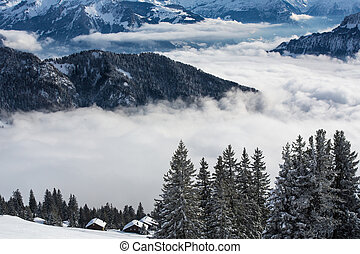 Splendid winter alpine scenery with high mountains and trees...