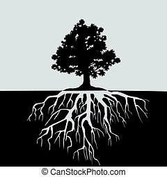Split view of oak tree and its roots. Black and white illustration with space for text
