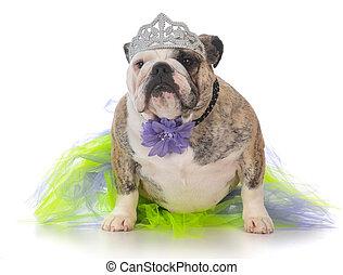 spoiled dog wearing tiara