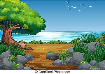 sponda, foresta, paesaggio, vista