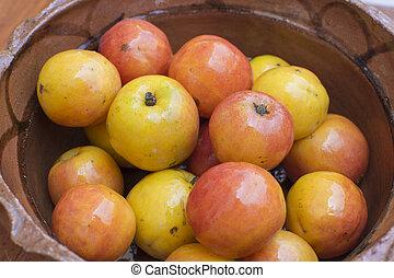 Spondias purpurea jocote plum fruit - Closeup Spondias...