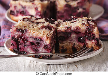 Sponge cake with blueberries close-up on a plate. horizontal...