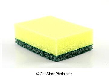 sponge isolated