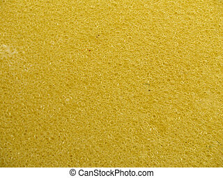 sponge texture