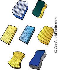 Sponges - Illustrations of various types of sponges.