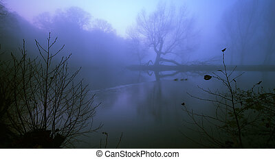 spooky background - photo taken on a foggy night to create a...