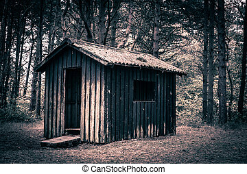 Spooky cabin in a dark and mysterious forest
