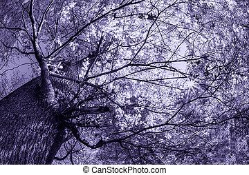 spooky, cimetière, arbre
