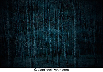 spooky, forêt, brumeux, nuit