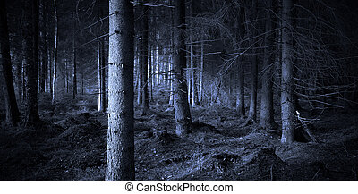 Spooky blue forest with dry trees