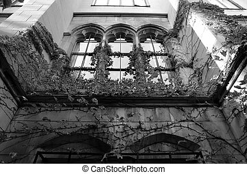 Spooky looking building with ivy growing up it - creepy...