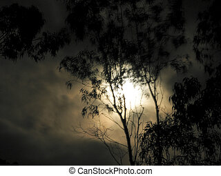 spooky moon light - spooky mood with moon light and blured...