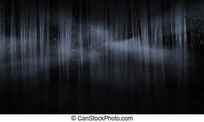 spooky, nebuloso, floresta, à noite