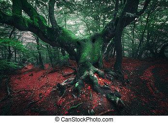 Spooky tree. Mystical dark forest in fog