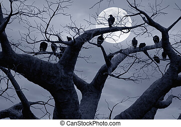 Vultures in a scary and spooky halloween scene.