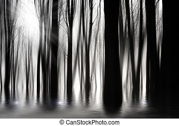 Spooky woods in black and white with flooding