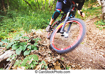 Sport. A cyclist on a bike with a mountain bike in the forest