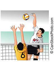 sport, dettagli