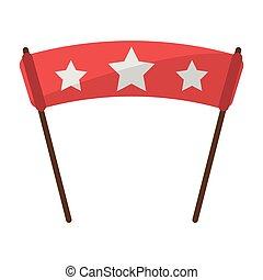 sport fan flag with stars